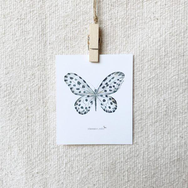 Acuarela Mariposa Dálmata