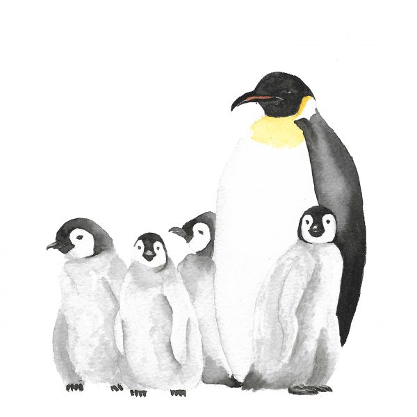 Print Pingüinos