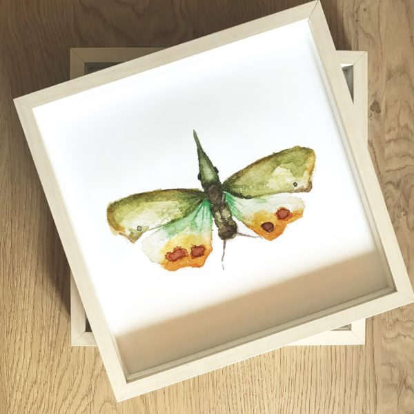 Print Mariposario – Bicho Verde