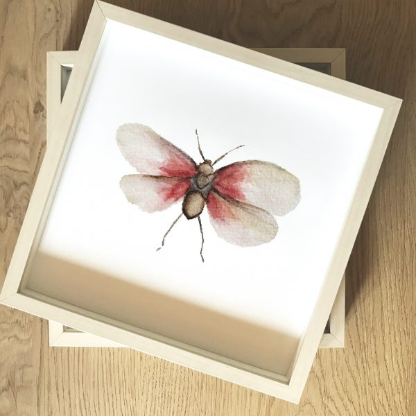 Print Mariposario – Mariposa Rosa
